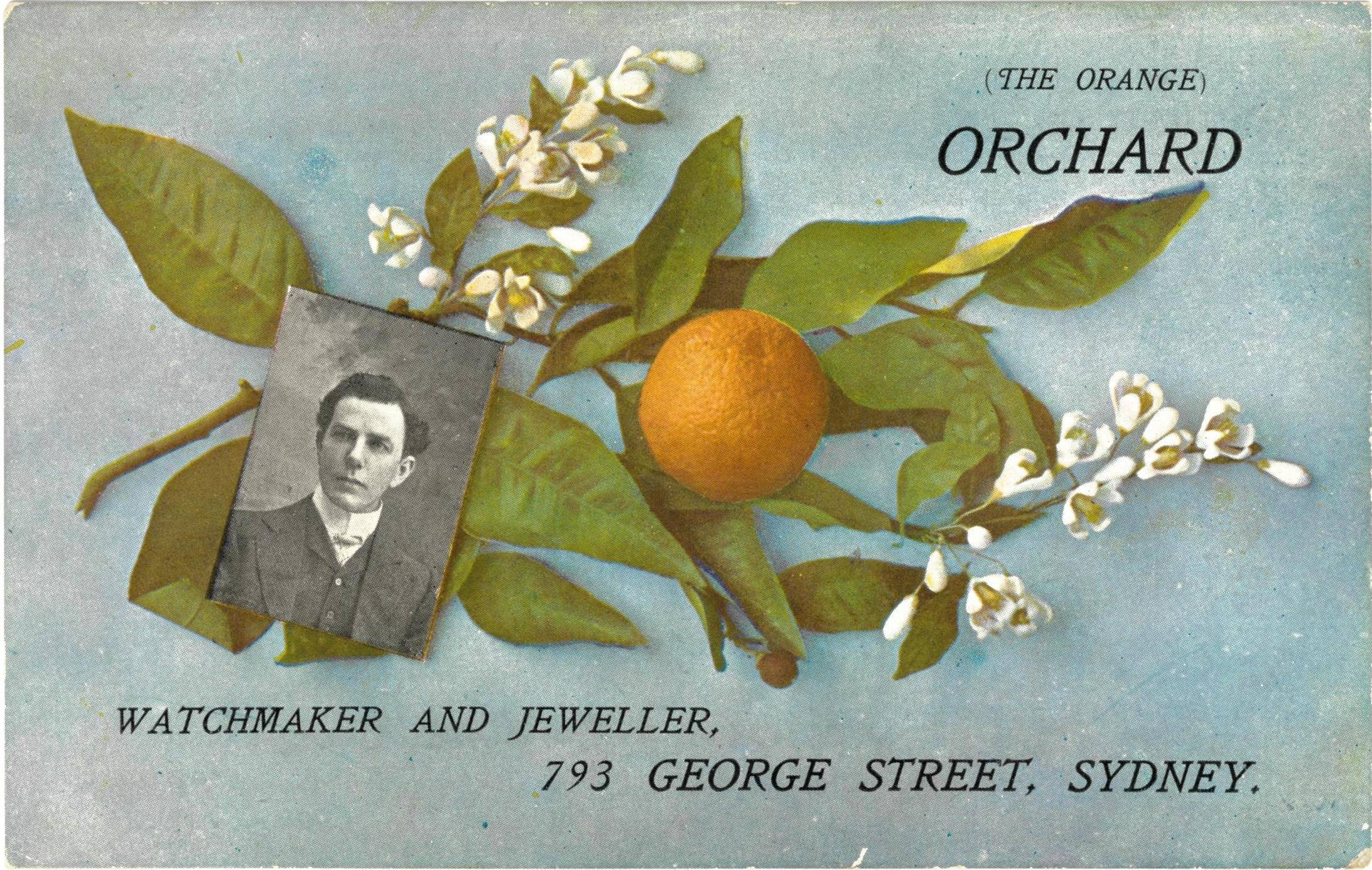 (The Orange) Orchard. Watchmaker and Jeweller, 793 George Street, Sydney / artist unknown